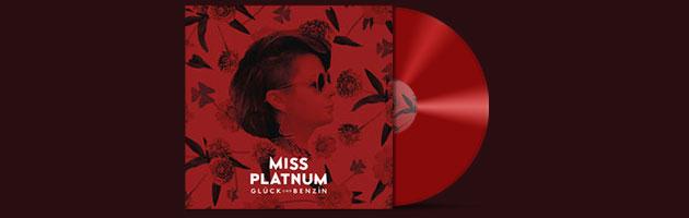 Miss Platnum – Der letzte Tanz, 99 Probleme